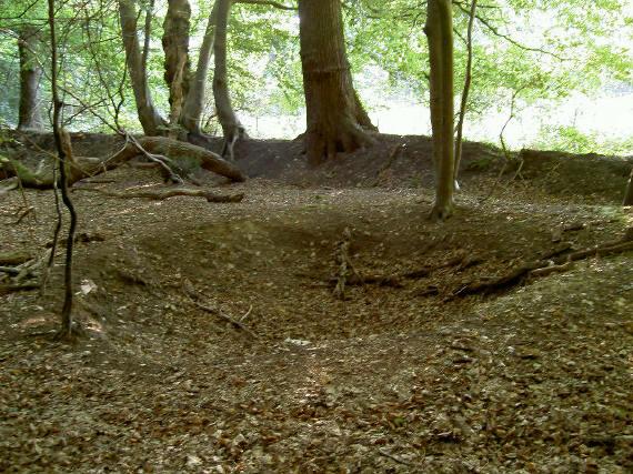 het bos wordt door aarden wallen omsloten...