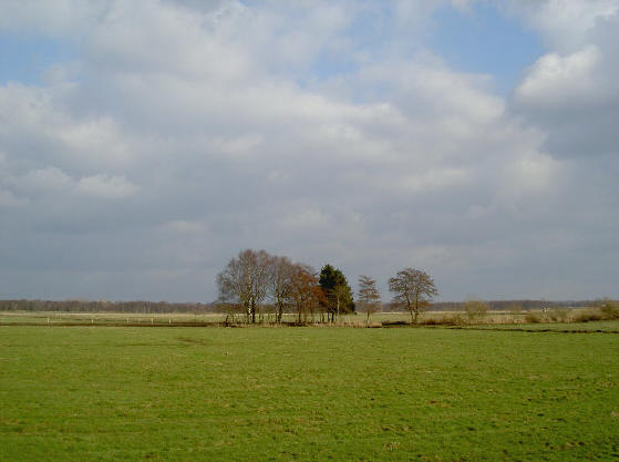 op sommige plekken kijk je heel mooi over de weilanden uit, zoals hier