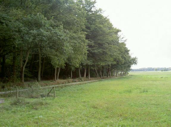 en hier kun je langs het bos verder fietsen...