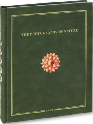 the photography of nature