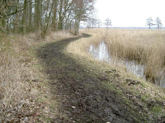 het pad bleef overal modderig