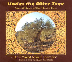 onder de olijfboom