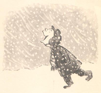 sneeuweter
