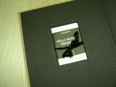 de gevouwen tekening, in het omslag van het boek
