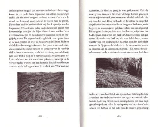 een dubbele pagina halverwege het boek...