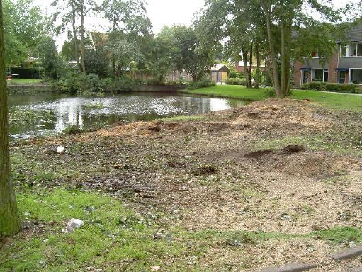 33 bomen zijn er gesneuveld...