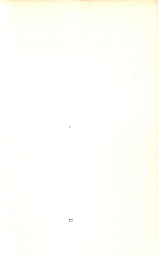 pagina 31...
