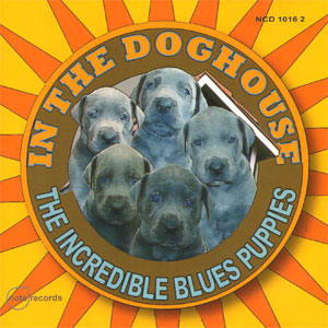 the incredible blues puppies