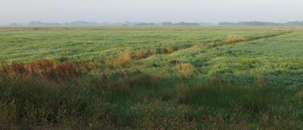 blik op de polder