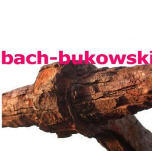bach-bukowski