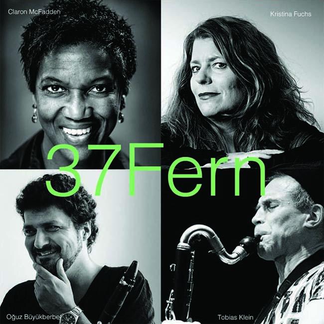 37 Fern