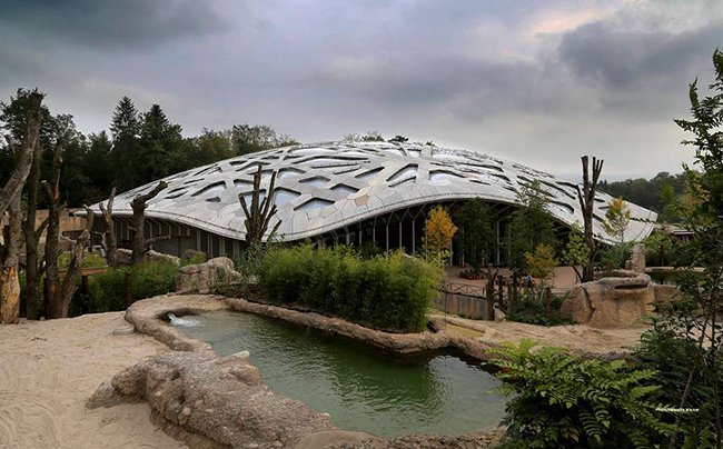 zoo zurich