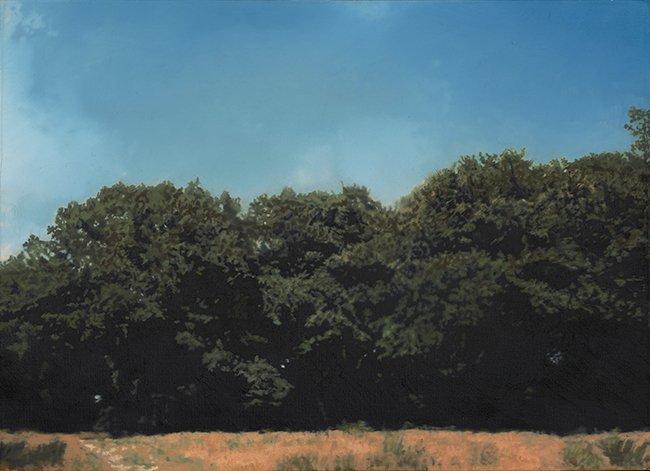 bomen, 1967